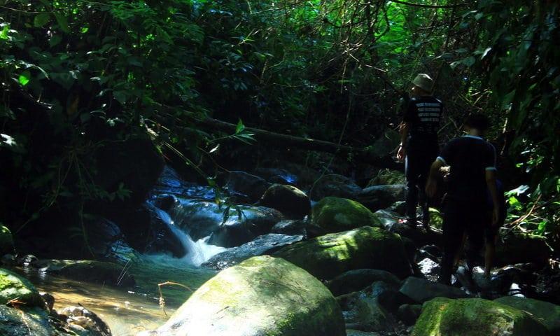 pesona Highland camp Bogor