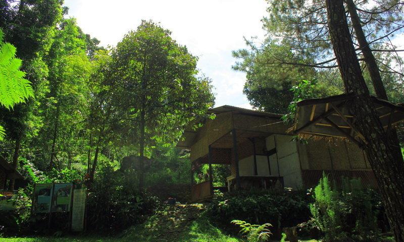 tempat wisata alam curug panjang