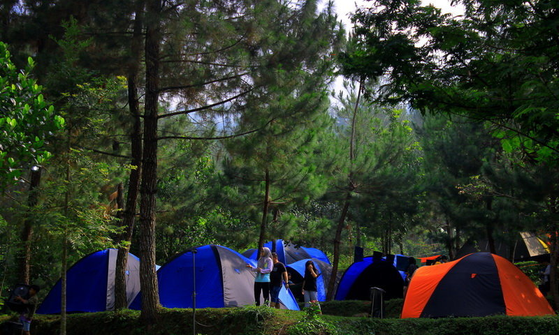 bumi perkemahan highland camp