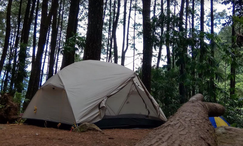 camping ground suaka alam loji