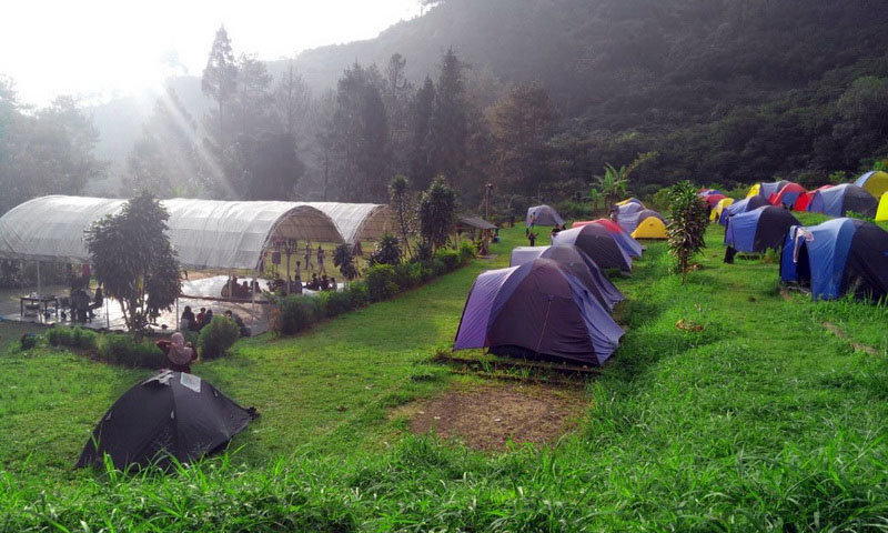 djungle camping ground puncak bogor