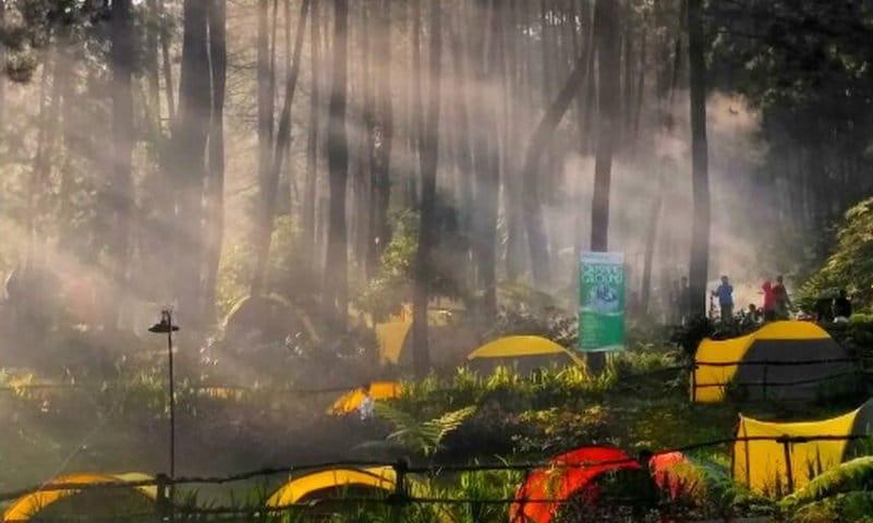 kampung rimba camping ground puncak