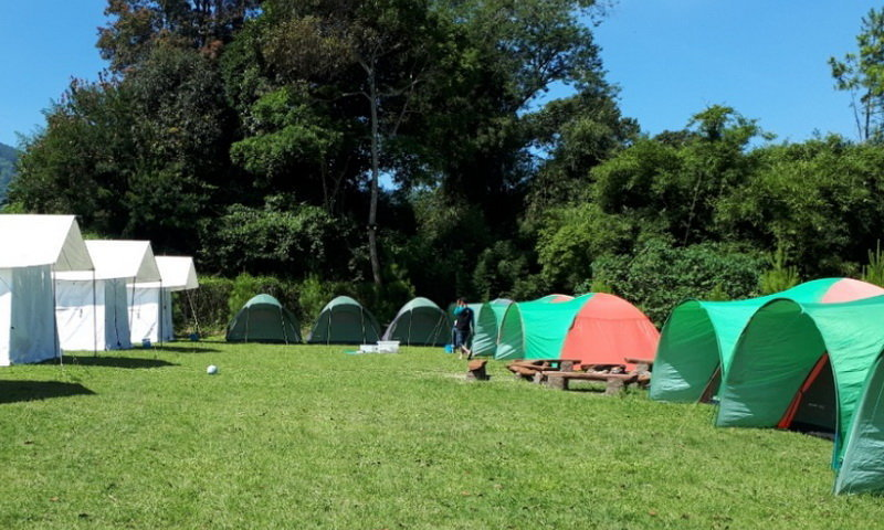 Pine Forest Camp Bandung