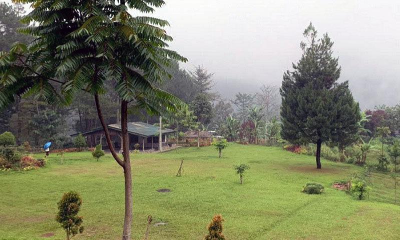 samara camping ground puncak