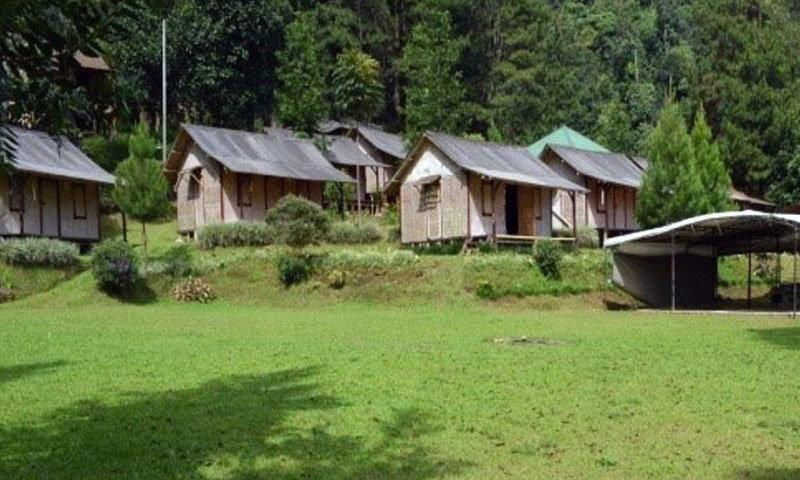 tempat berkemah puncak djungle camp