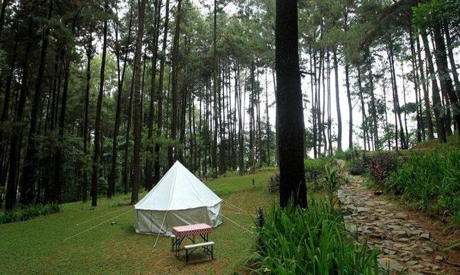 tempat camping gunung pancar bogor